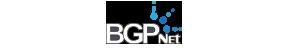 BGP Network